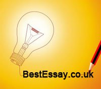 Term Papers Essay